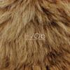 Lion | Stimming Remix | Snippet