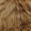Lion | Original Mix | Full Length