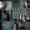 Plain White T's - The Giving Tree