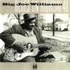 Big Joe Williams - 45 Blues