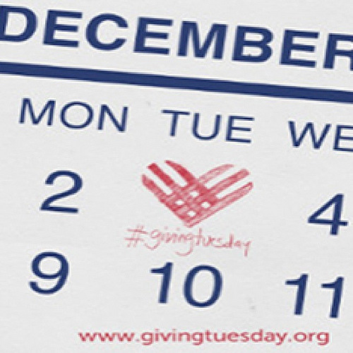 'Giving Tuesday' offers charitable break from holiday consumerism