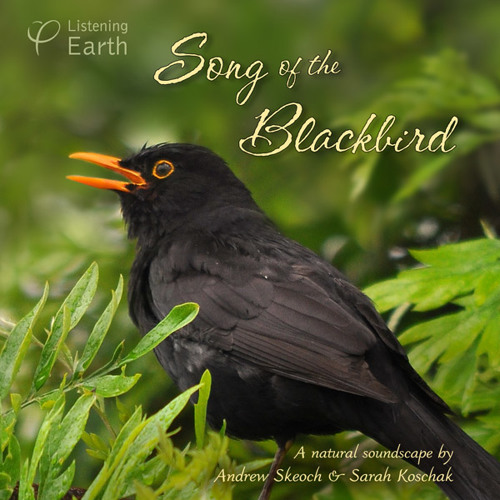 Song of the Blackbird - Album Sample