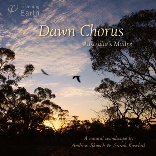 'Dawn Chorus: Australia's Inland' - album sample