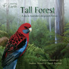Boobook Owls and Yellow-bellied Gliders from 'Tall Forest' album