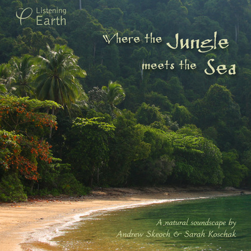 'Where the Jungle meets the Sea' - album sample