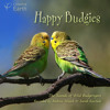 'Happy Budgies'- album sample