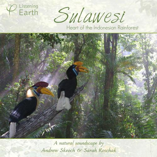 'Sulawesi - Heart of the Indonesian Rainforest'- album sample