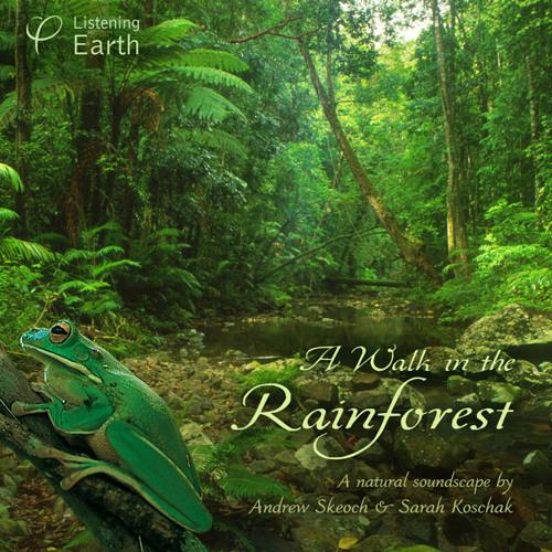 'A Walk in the Rainforest'- album sample