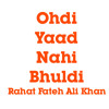 Ohdi Yaad Nahi Bhuldi- Rahat Fateh Ali Khan