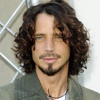 Chris Cornell Like A Stone