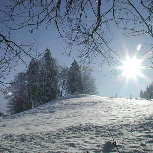 Göppi-Winterzauber <3 (Classic)