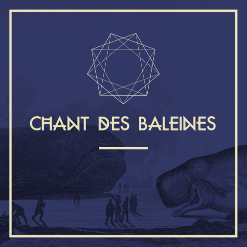 Chant des Baleines feat. Trey Gunn (whammy guitar solo)