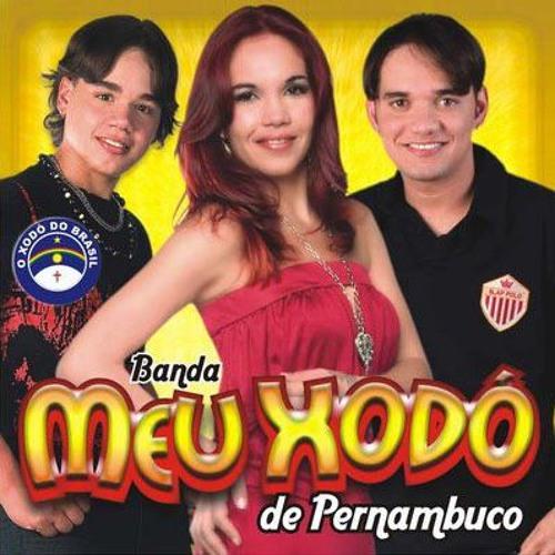 Meu Xodó de Pernambuco - Por Amor
