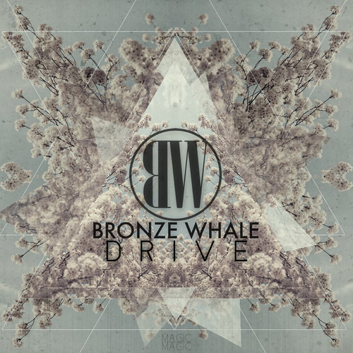 Drive by Bronze Whale
