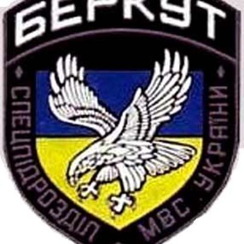 Радіоперемовини Беркуту під час розгону Майдану 30 листопада