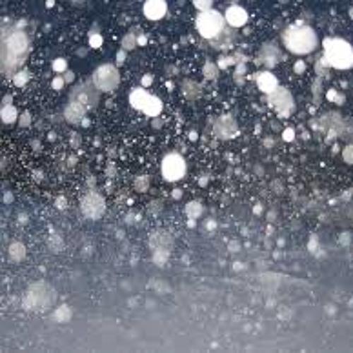 ببین باز می بارد آرام برف