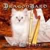 Nyan Cat Song(Pop Tart Cat) [Harp Cover Version]