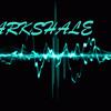 La Musica Conecta - ARKshale Feat The Blackman (Sauna Record's)