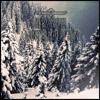 Wintermärchen // Free Download
