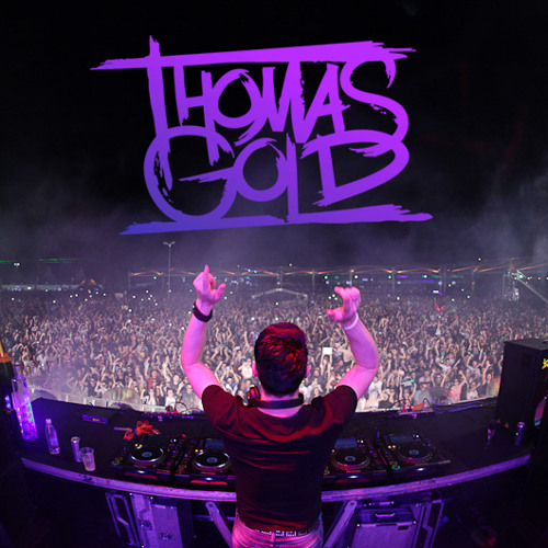 Thomas Gold - Live @ Dream Valley Festival 2013