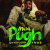 YNW$ - (Mula Pugh)