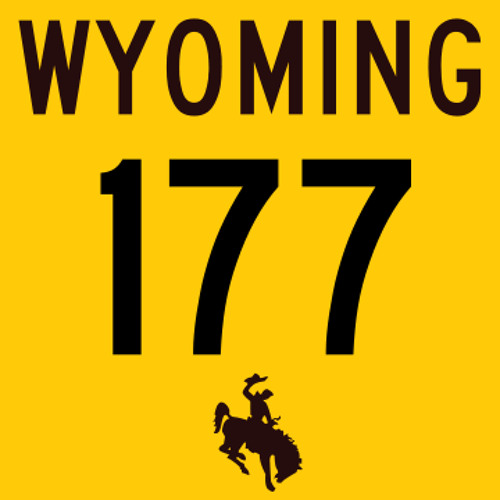 Wyoming Electronica 177bpm