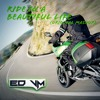 Ride In A Beautiful Life (Starkillers Vs. Armin Van Buuren Ft. Cindy Alma)[ED VM Mashup]