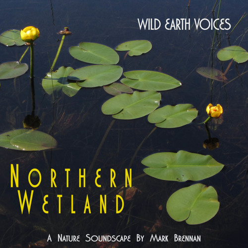 Northern Wetland Album Sample