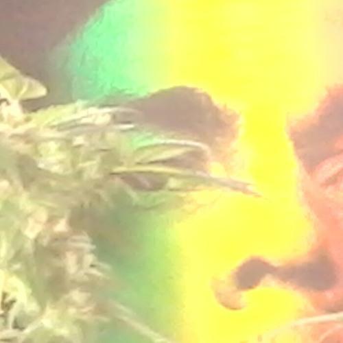 Gamblah(full) Soundz Of Jah at Manono Street, Kailua