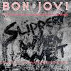Bon Jovi - You Give Love a Bad Name [Guitar-Bass Duet Sample]