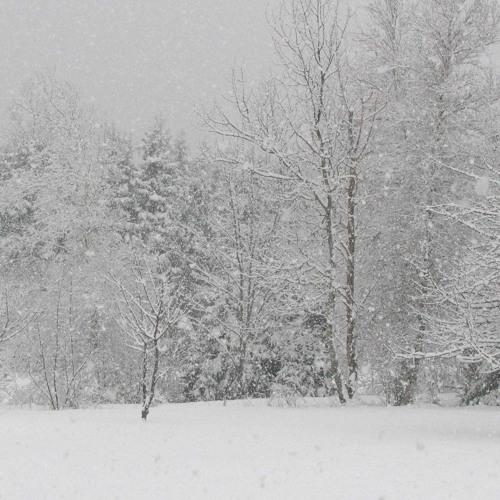 Snödriva Längtan