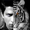Don Tiger - Eye of the Tiger + Don Theme FuseMix by Sandeep Jadwani