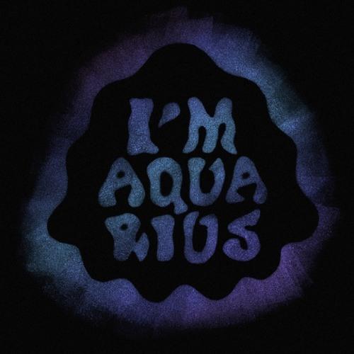 Track Premiere: Metronomy - I'm Aquarius (Edwin Van Cleef Remix)