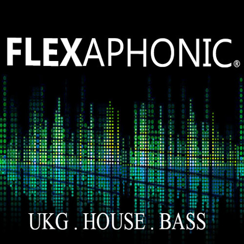 Wonder Girls - Like Money (FLEXAPHONIC UK GARAGE REMIX)