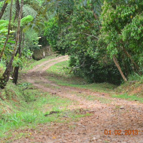 Little Way Different - Jungle mix - Dr.PK