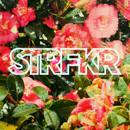 STRFKR - While I'm Alive (Melodeyes Remix Part Il)