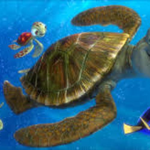 Nemo (سلاحف البحر (