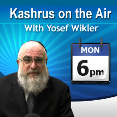 Yosef Wikler Apr 07 - Rabbi Yehuda Spitz