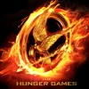 Movie Review - The Hunger Games Catching Fire
