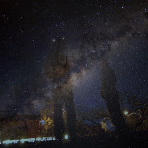 Nocturnal Lyf3