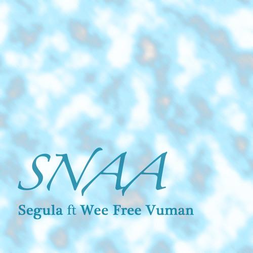 Segula ft WeeFreeVuman - SNAA