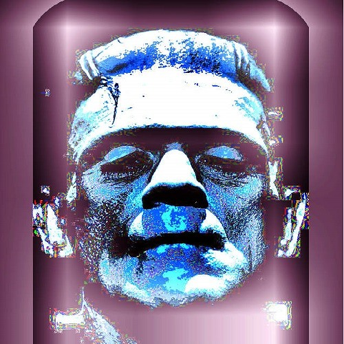 Frankenstein fash - digitalitar