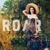 Katy Pery - Roar (Cover)