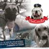 Hotel Canino Real, si tu te vas de vacaciones, deja que tu mejor amigo también lo haga!