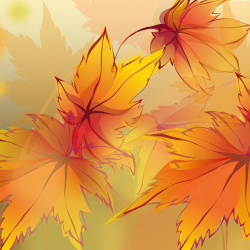 Autumn's Transparency