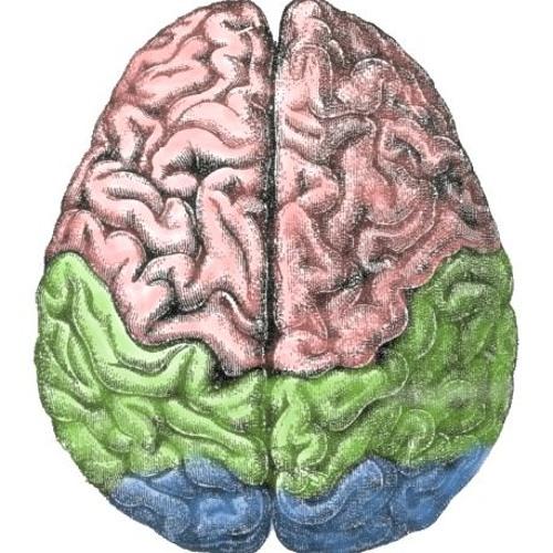 Language acquisition, language loss and dementia