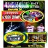 NOVA MUSICAL CLAUDIO BROWN X MUSIC SOM ,,,JAMAICA BRASILEIRA