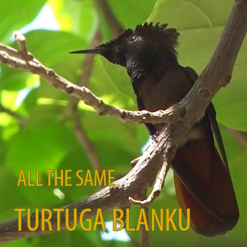 Turtuga Blanku - All The Same
