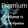 Volume 11 - Aural Pipeline