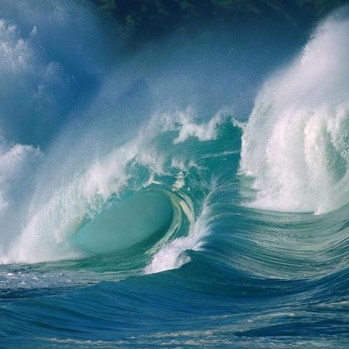 Big Wave Discipline